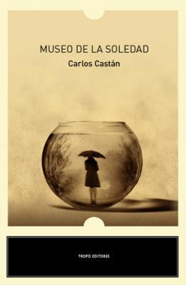 Trozos de un álbum roto   (Carlos Castán)